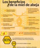 Beneficios miel de manuka